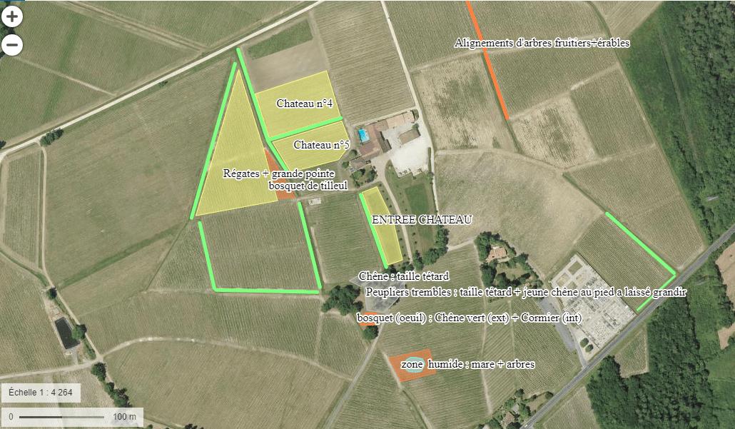 Mise en place de l'agroforesterie dans les parcelles autour du château Anthonic